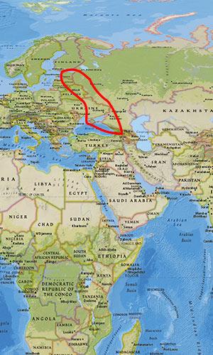 arc de crises frontière russe