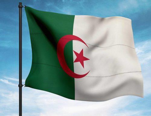 Algérie : la seconde bataille d'Alger